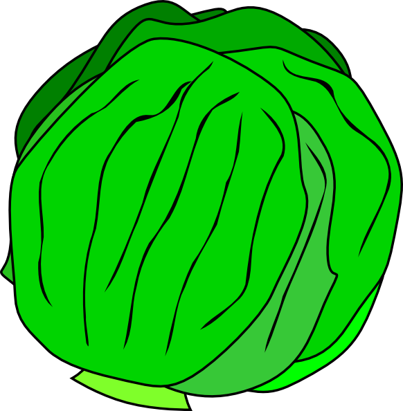 transparent Lettuce clipart. Whole clip art at.