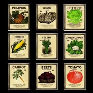banner stock Free digi scrapbook seed. Lettuce clipart vintage.