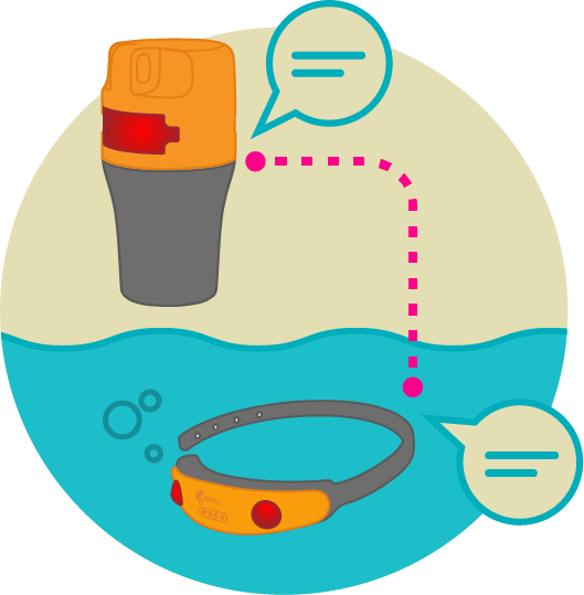 banner free Lifeguard clipart swimming safety. Seal swimsafe swim monitor.