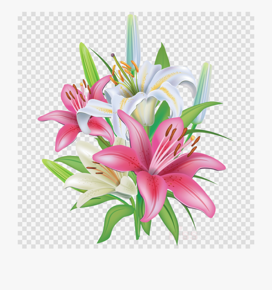 clip library Lilies clipart. Flower png lily mothers.