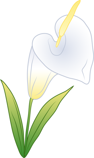 svg transparent library Lilies clipart canna lily. Calla border free on.