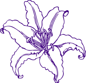 jpg library download Lilies clipart daylily. Purple lilly clip art.