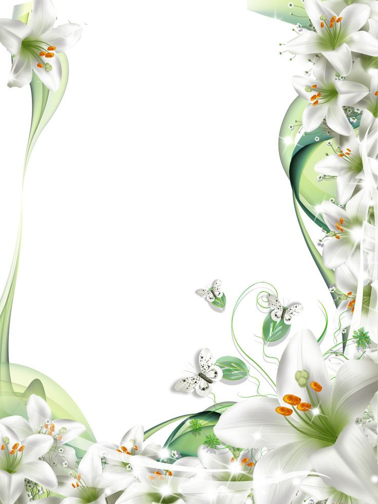 banner freeuse stock Flores one stroke painting. Lilies clipart frame.