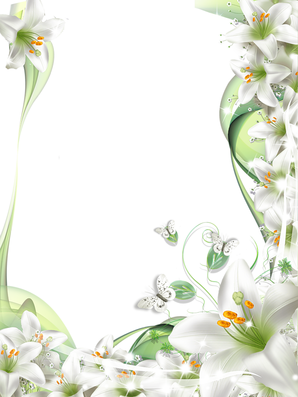 svg free library Transparent png photo with. Lilies clipart frame.