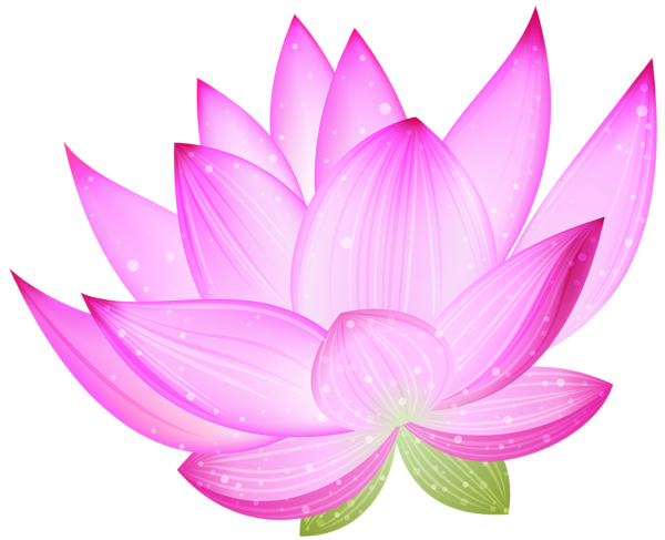 graphic download Spa flowers clipart. Pink lotus png by