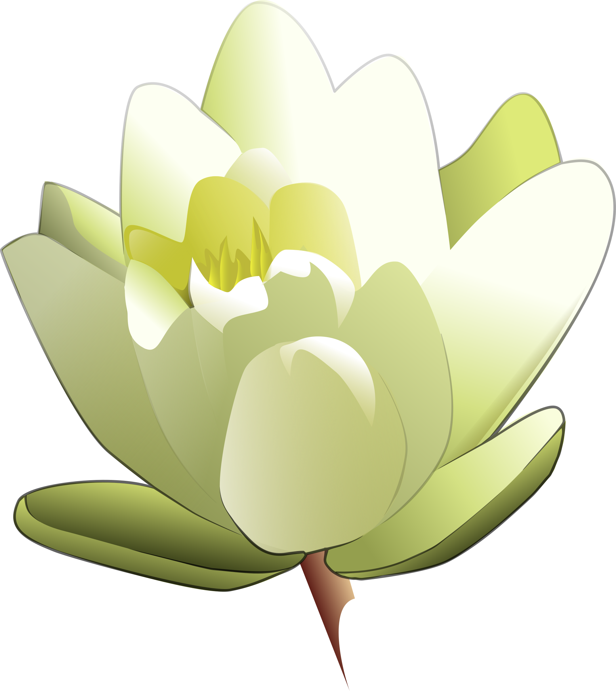 jpg stock Lily clipart animated. Water big image png.