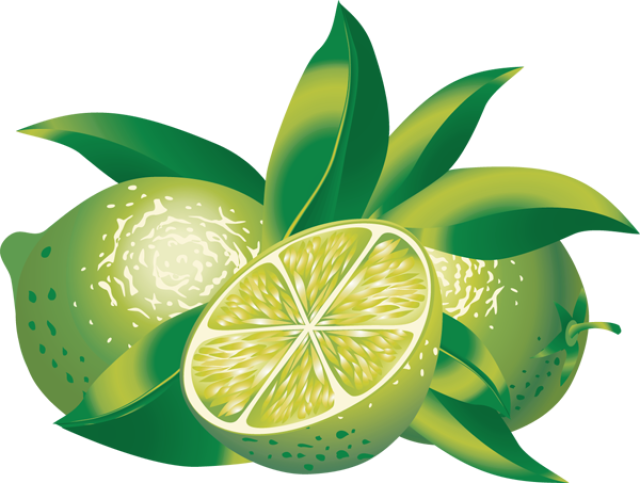 clip art black and white Clip art of citrus. Lime clipart.