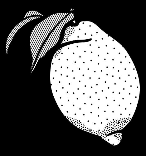 graphic transparent stock Lime clipart black and white. Lemon public domain vectors
