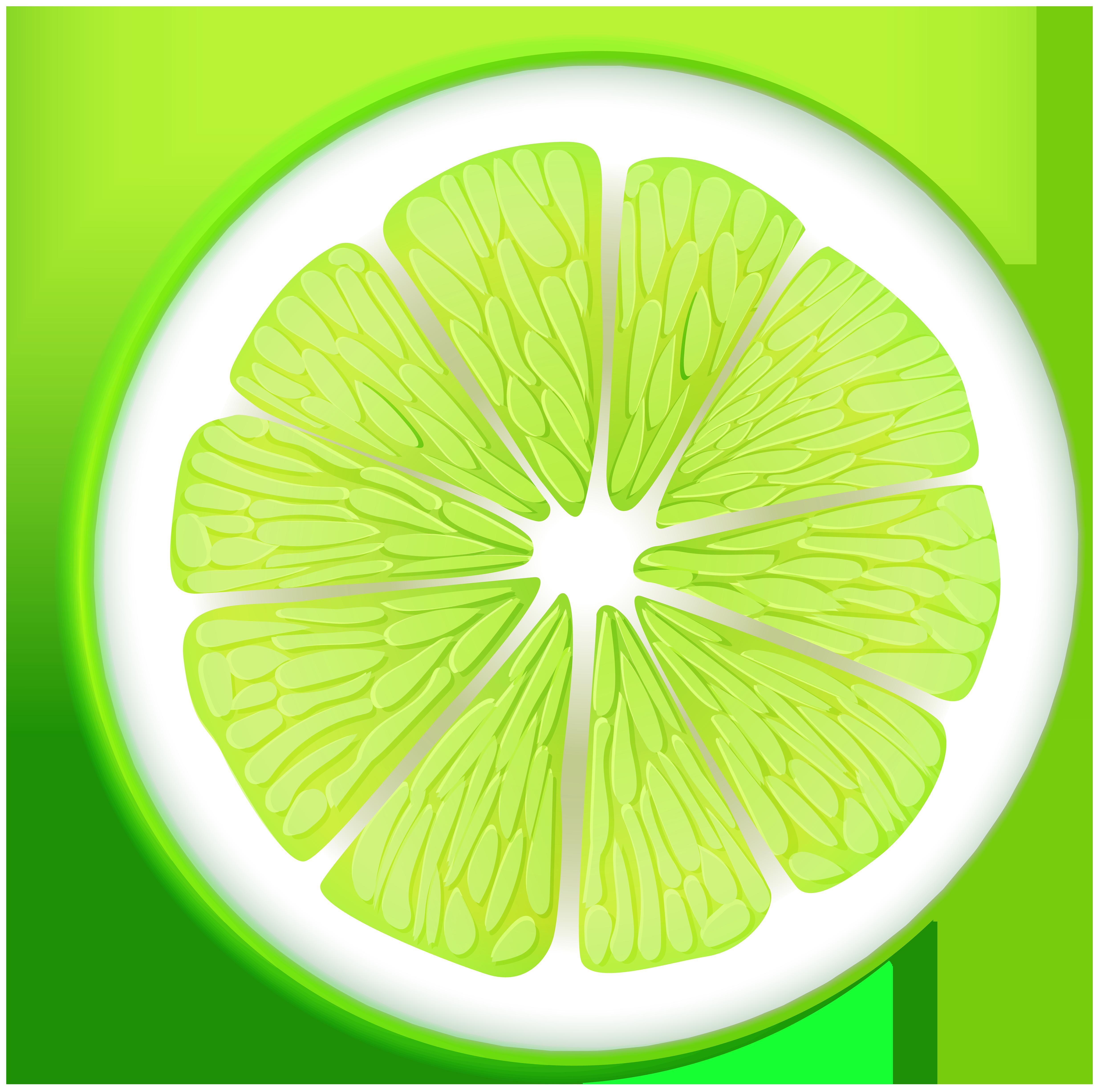 clipart download Lime clipart circle. Transparent png clip art.