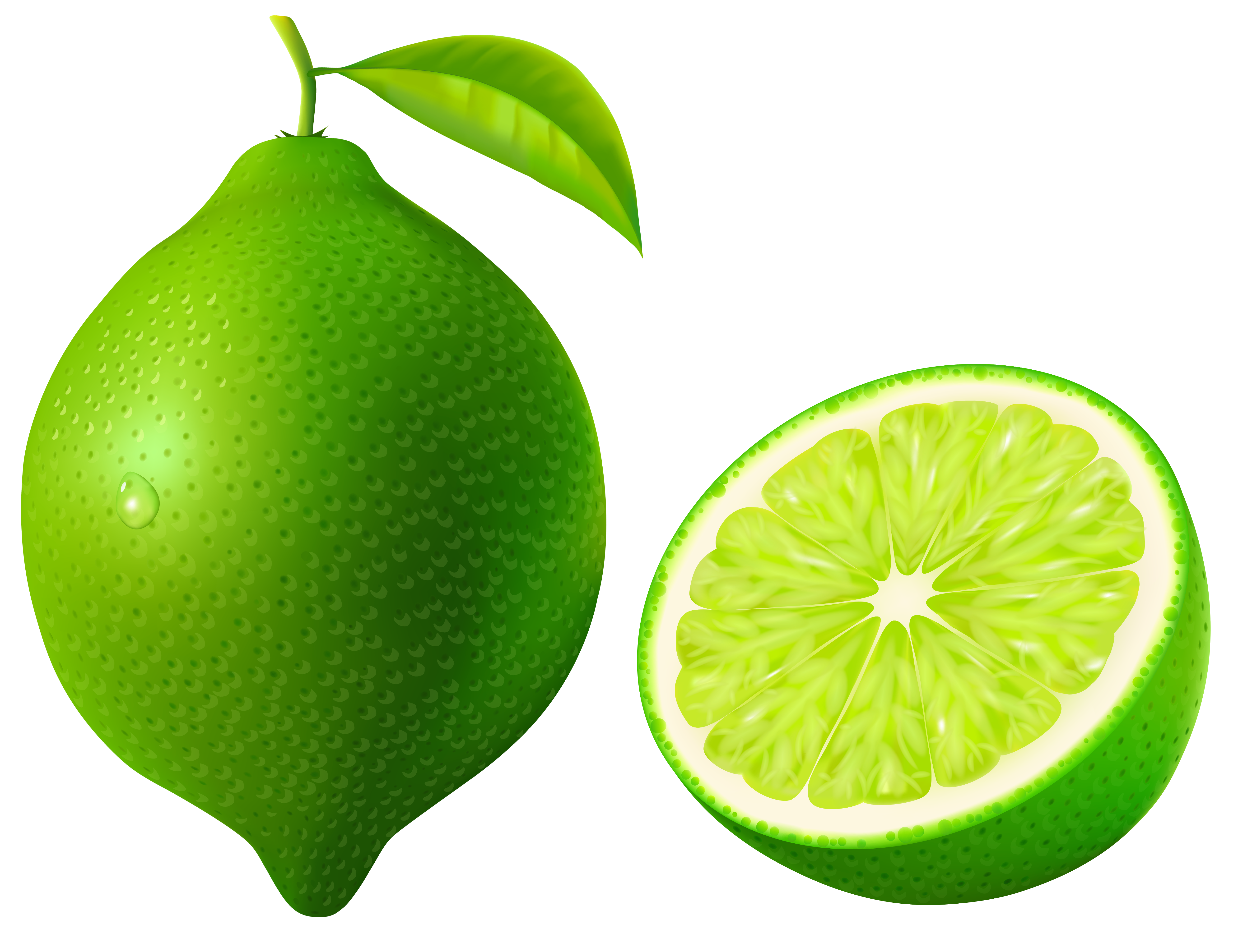 svg library download Lime clipart half lime. Animated free on dumielauxepices.