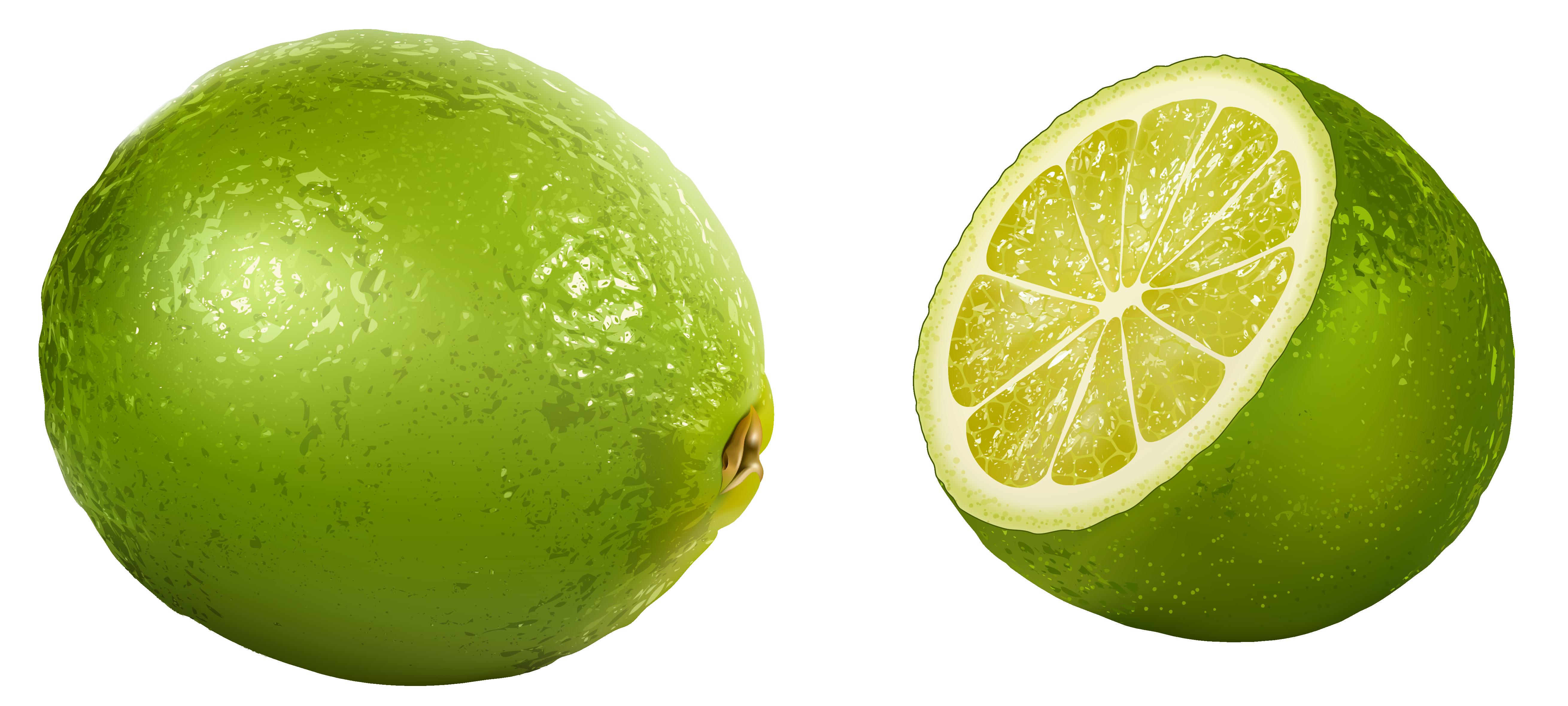 png transparent Lime Clipart Picture