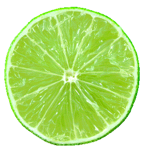 vector free stock Lime PNG images free download