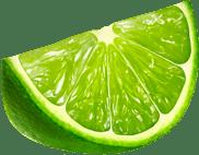 svg library stock Lime Slice transparent PNG