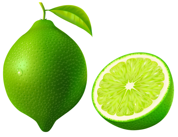 svg free Green Lime PNG Vector Clipart Image