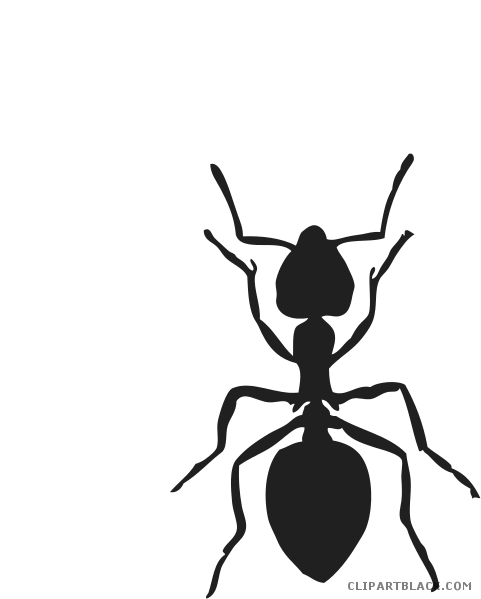 svg library stock Black and white clipartblack. Line of ants clipart