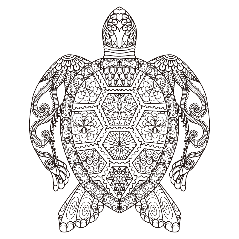 vector black and white library Sea turtle coloring book. Linear drawing