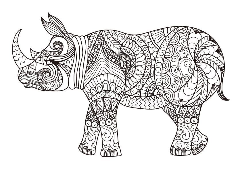 banner library library Javan rhinoceros coloring book. Linear drawing