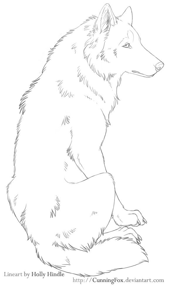 banner freeuse download Free sitting chill by. Lineart drawing wolf