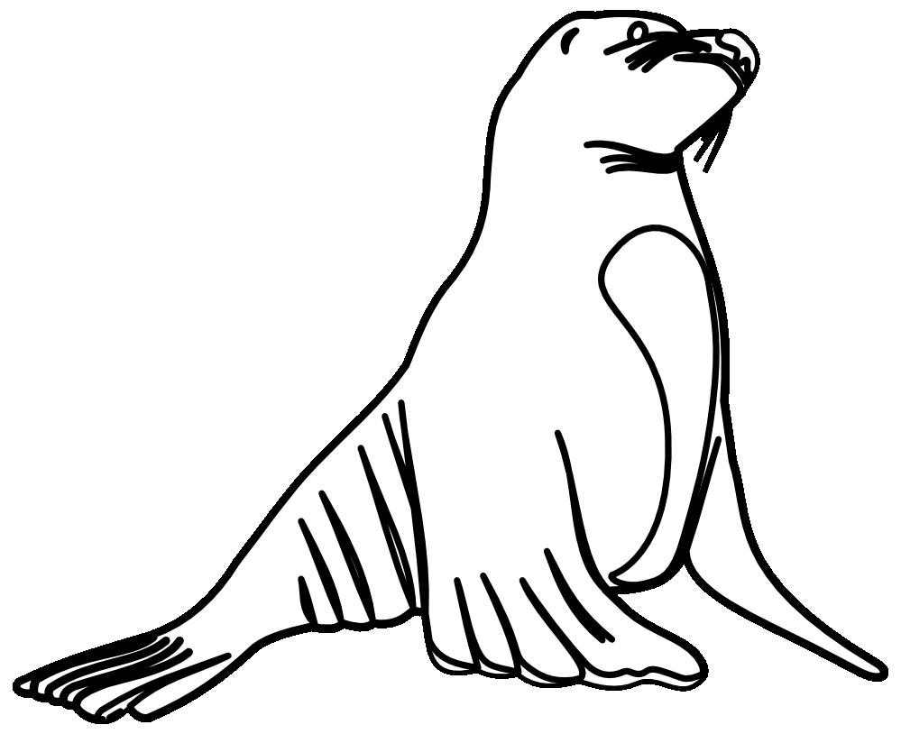png transparent Lion clip art panda. Seal clipart black and white