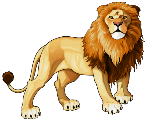 freeuse library Lions clipart.  png web.