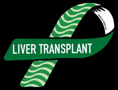 clipart freeuse Custom ribbon new way. Liver clipart liver transplant.