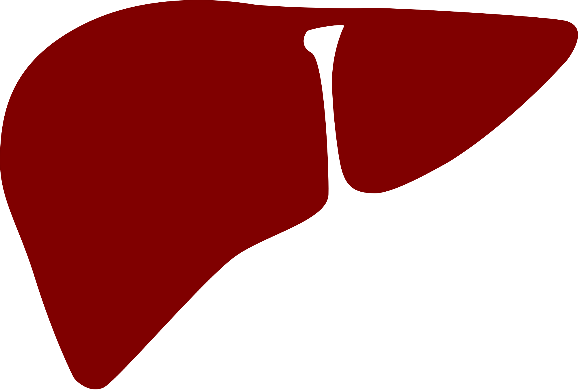image transparent Liver clipart realistic. Free download best on.