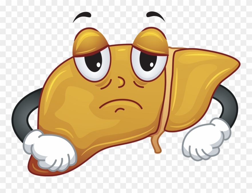 clipart free download Liver clipart sad. Sadness wrong answer sick.