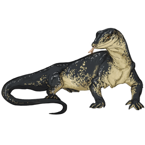 graphic royalty free download Lizard PNG Transparent Lizard