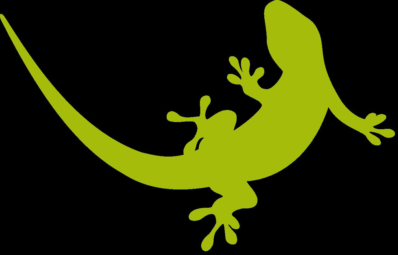 black and white Lizard Gecko Exotic pet Cecak Clip art