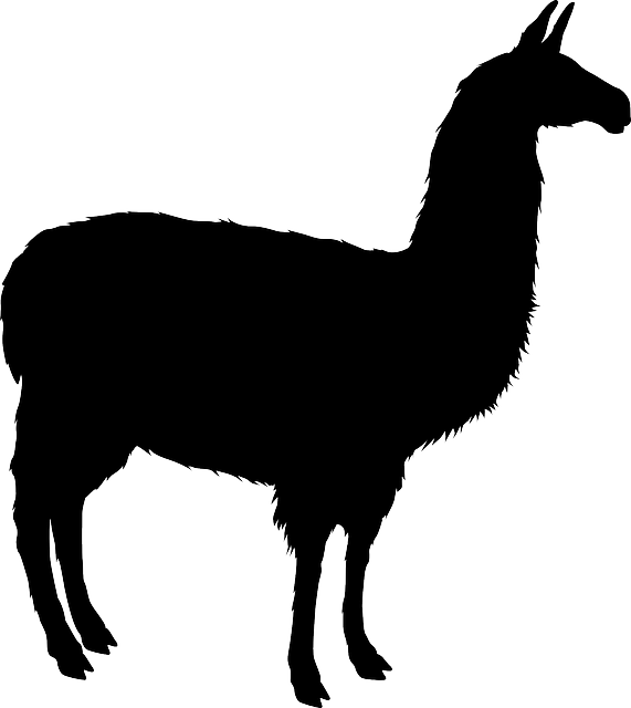graphic free library Llama clipart black and white. Free image on pixabay.