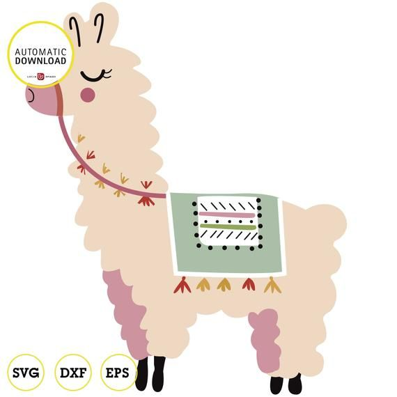 jpg transparent Llama clipart. Pin on products .