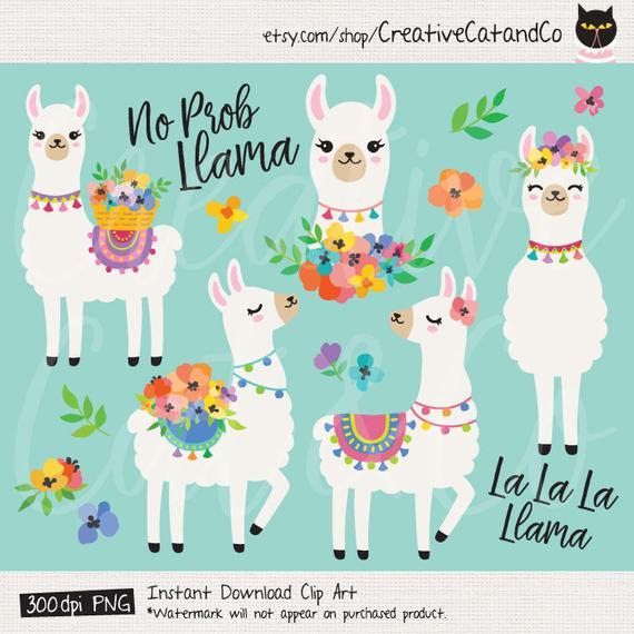 image transparent library Cute llamas with spring. Llama clipart.