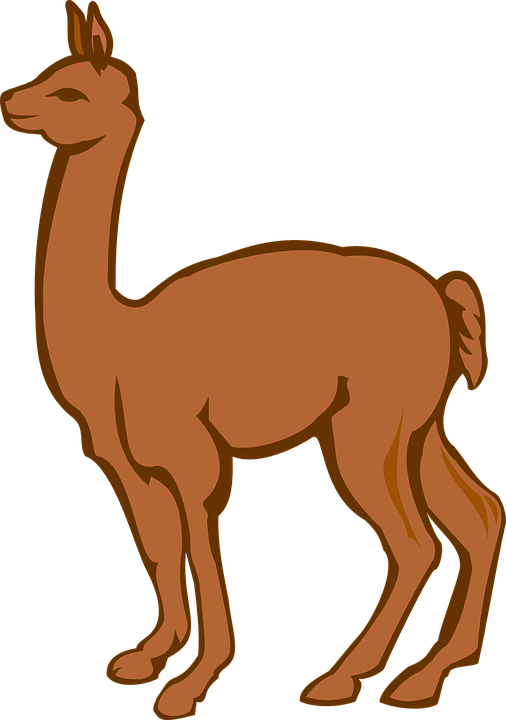 vector royalty free library Real free on dumielauxepices. Llama clipart.