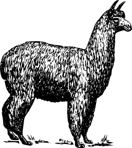 vector library stock Llama Clipart black and white