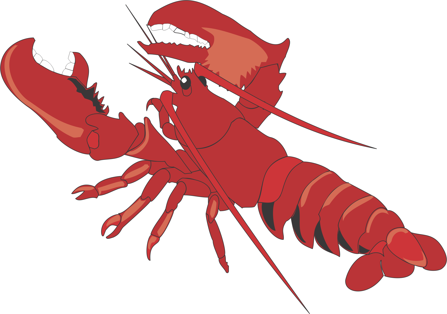 library Cartoon clip art transprent. Lobster claw clipart.