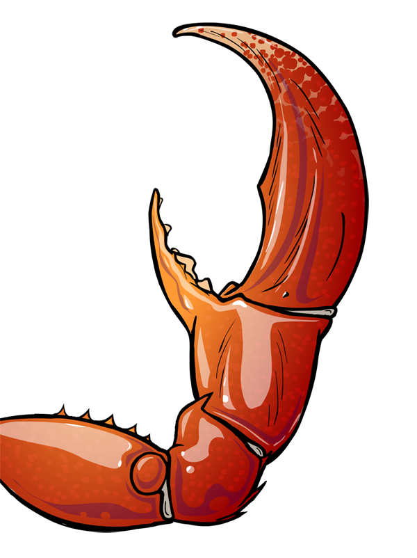 banner free library lobster claw clipart #65651352