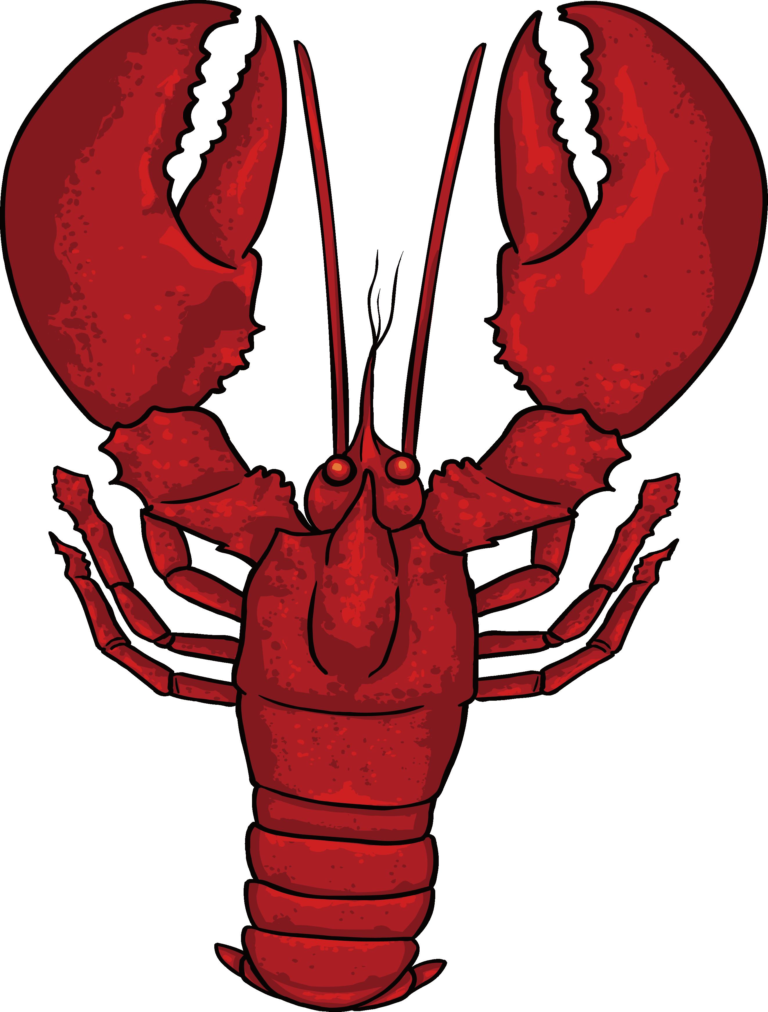 jpg stock Dungeness crab homarus clip. Lobster clipart crayfish.