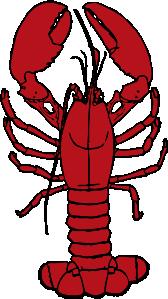 vector library library lobster vector kid #114241367