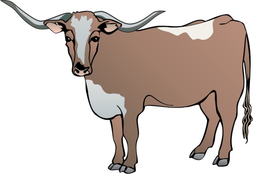 clip library Cattle clip art free. Longhorn clipart