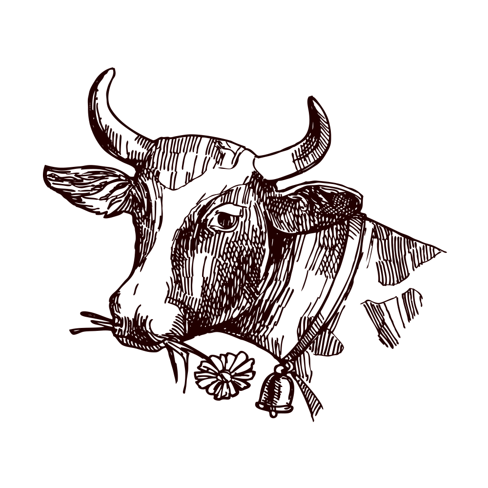 svg free library Texas Longhorn Milk Drawing Sketch