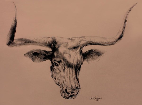 clip free stock Longhorn Drawing Art Print
