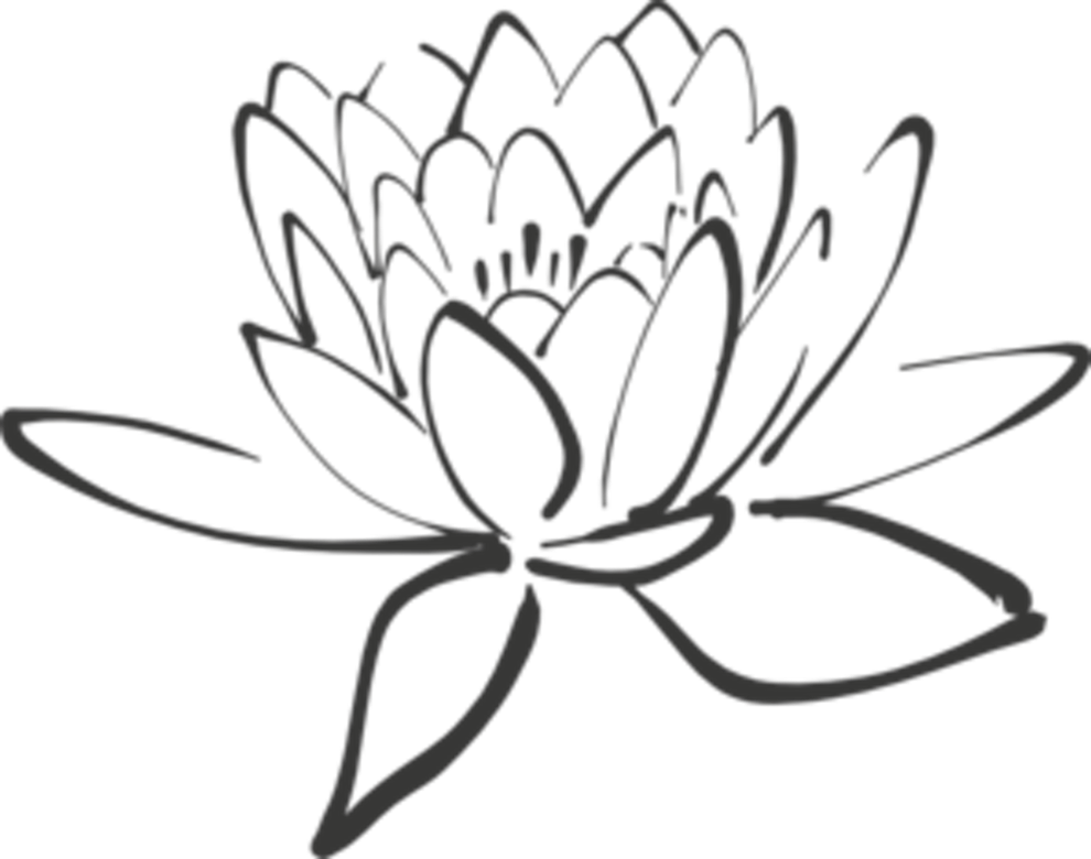 banner transparent stock Drawing at getdrawings com. Lotus flower clipart black and white