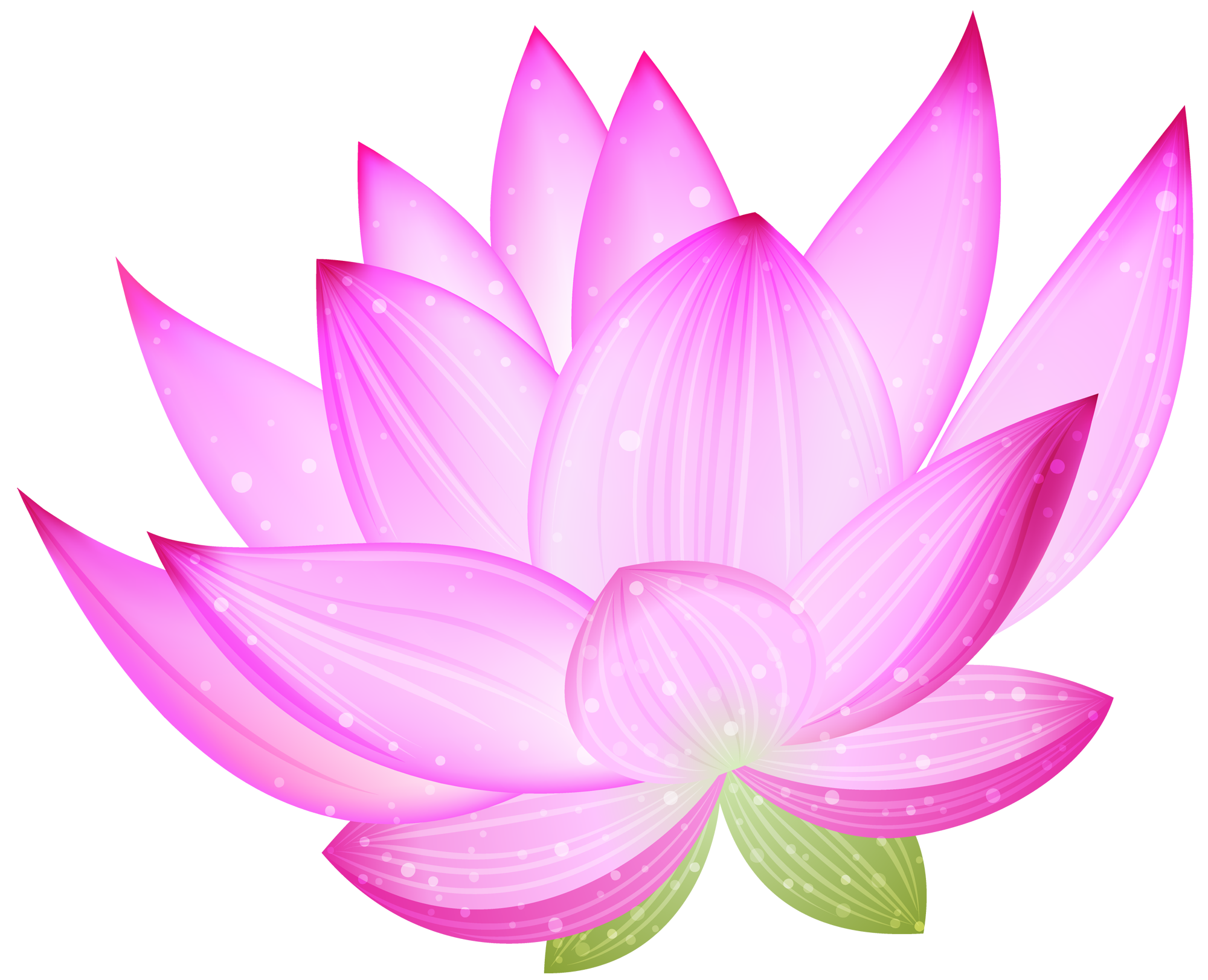 jpg stock Large pink png gallery. Lotus clipart
