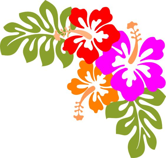 svg free library Luau clipart and borders. Border free clipartpost .