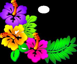 freeuse download Luau clipart hawaiian design. Hibiscus corner clip art.