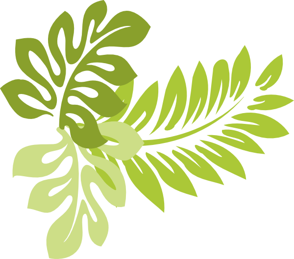 graphic black and white stock tropical leaf clipart #65429657