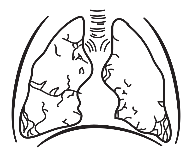 clip art freeuse download Without coloring medium image. Lungs clipart black and white