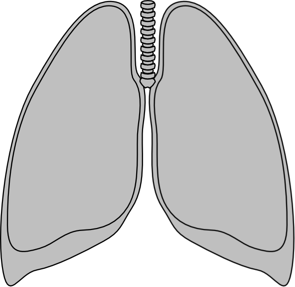 jpg freeuse download Lungs clipart black and white. Lung clear clip art