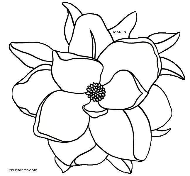 jpg royalty free stock Magnolia clipart outline. Louisiana state flower panda.