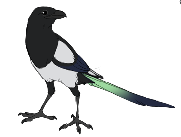 image library library target drawing magpie #104548888
